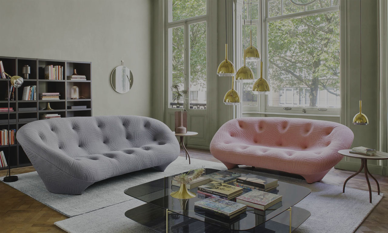 Ligne Roset Living room